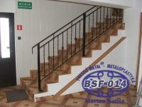 bsf-014